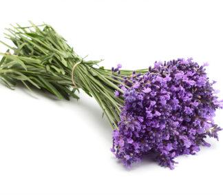 Lavendel/ Lavender – 100% rein eterisk olje (10ml)