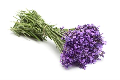 Lavendel/ Lavender – 100% ren eterisk olje (10ml)