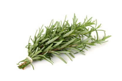 Rosmarin/ Rosemary – 100% rein økologisk eterisk olje (10ml)