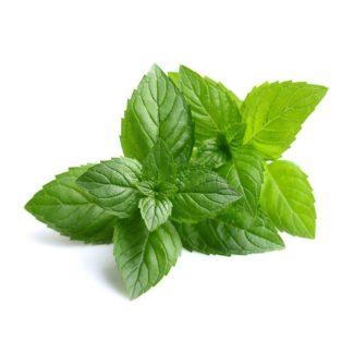 Peppermynte/ Peppermint – 100% ren økologisk eterisk olje (10ml)